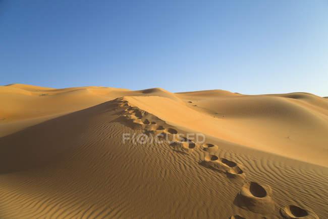 United Arab Emirates, Dubai, Rub al-Khali desert, the empty quarter, footprints on sand — Stock Photo