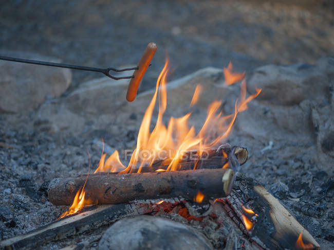 Sausage over campfire at evening — Stock Photo