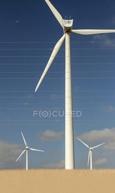 Spanien, Andalusien, Tarifa, Windpark und Überland Linien — Stockfoto