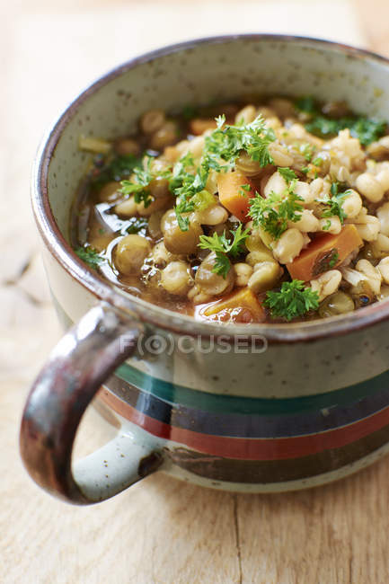 Cup of lentil barley stew with brown lentils, barley, onions, carrots garnished with parsley — Stock Photo