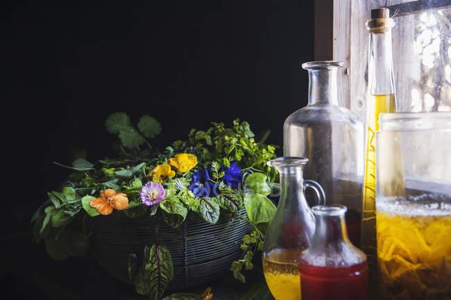 Variedade de ervas medicinais e frascos de óleo — Fotografia de Stock