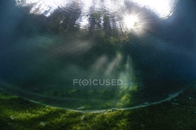 Austria, Styria, Tragoess. Upward view under water at the Green Lake — Stock Photo
