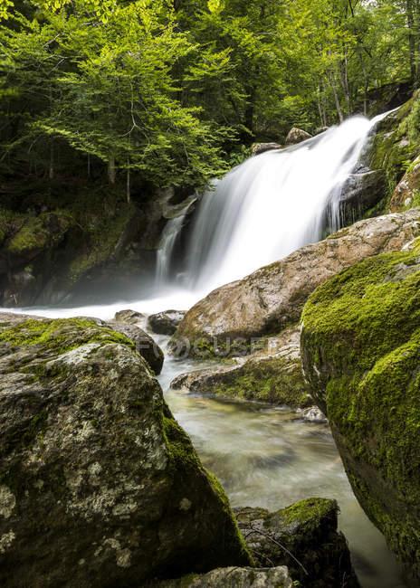 Valle de orlu cascada en bosque verde - foto de stock