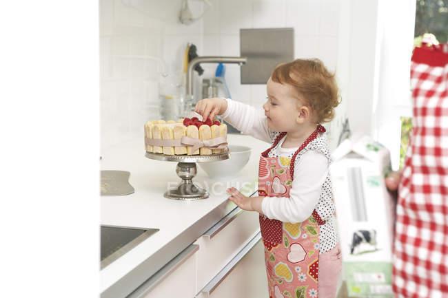 Маленька дівчинка, торкаючись ягоди на торт на кухонного столу — стокове фото