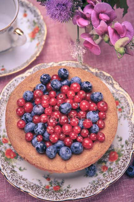 Черника и красной смородины на торт — стоковое фото