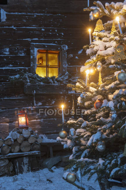 Facade of wooden cabin with lightened Christmas Tree in foreground, Altenmarkt-Zauchensee, Salzburg State, Austria — Stock Photo