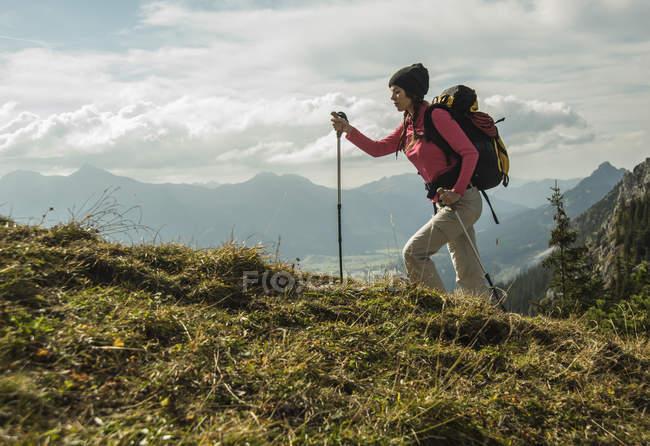 Austria, Tyrol, Tannheimer Tal, young woman hiking on alpine meadow — Stock Photo
