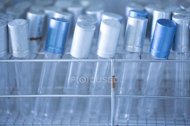 Tubes à essai dans un laboratoire — Photo de stock