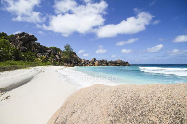 Вид на песчаный пляж и деревья на берегу под облаками в дневное время — стоковое фото