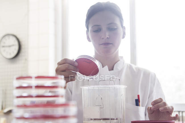Portrait of female food analyst working in laboratory — Stock Photo