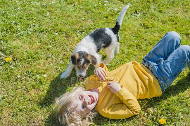 Мальчик играет с Джеком Рассел Терьер щенок в саду — стоковое фото