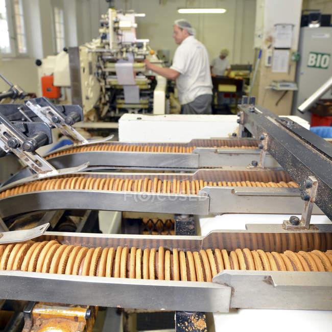 Производственные линии с печеньем на хлебопекарной фабрике с работниками на заднем плане — стоковое фото