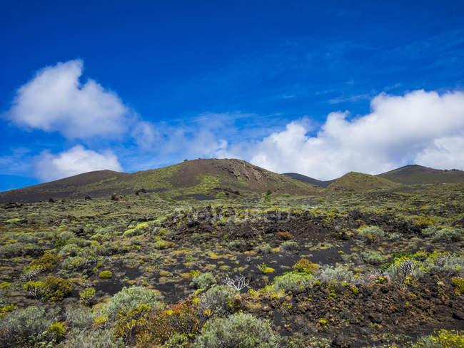 Іспанія, Канарські острови, Ла-Пальма, Фару de Fuencaliente, вулканічних краєвид рослинності поля та — стокове фото