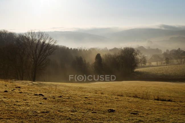 Deutschland, Nordrhein-Westfalen, Bergisches Land, Landschaft im Morgennebel — Stockfoto