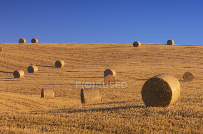 Італія, Тоскана, солому поля з тюки сіна перед Синє небо — стокове фото
