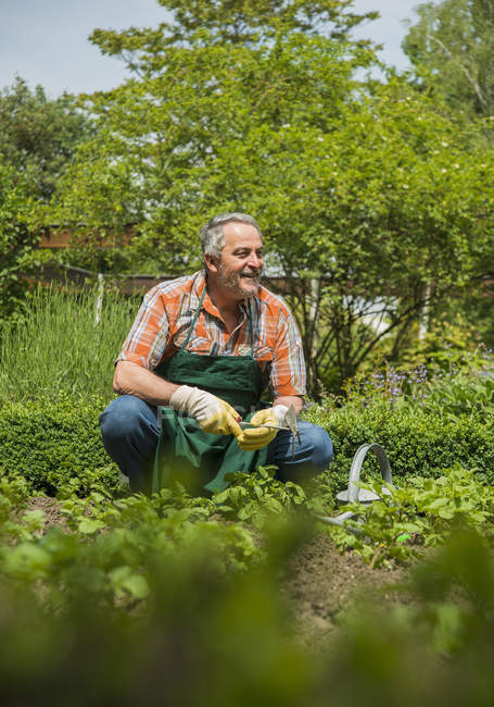 Senior gardener at work sitting by ground looking aside — Stock Photo