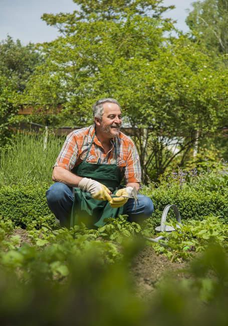 Senior gardener at work sitting by ground looking aside — Stock Photo