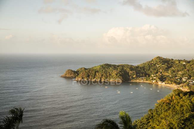 Caraïbes, Trinidad et Tobago, Tobago, CASTARAB — Photo de stock