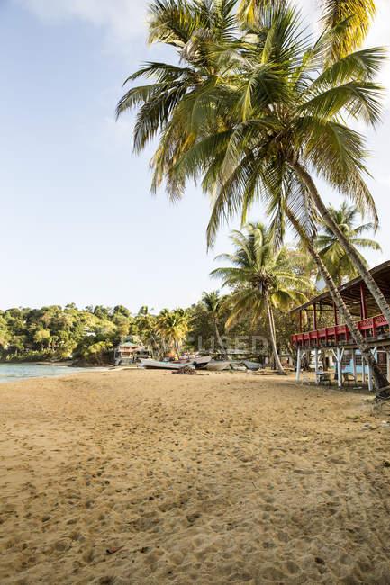 Caraïbes, Trinidad et Tobago, Tobago, plage de CASTARAB — Photo de stock