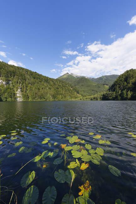 Austria, Salzburg State, Salzkammergut, St. Gilgen, Krotensee Lake with Schafberg Mountain — Stock Photo