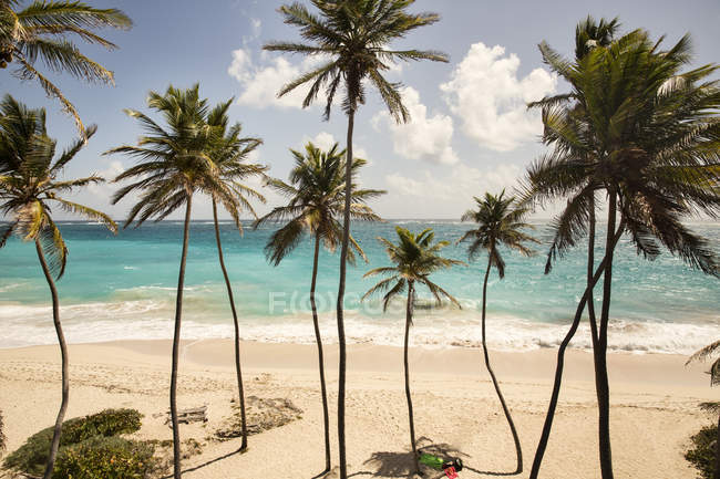 Caraibi, Barbados, Bottom Bay beach — Foto stock