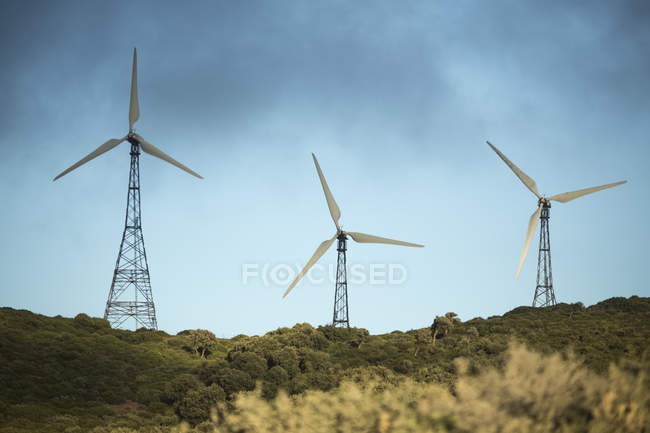 Spain, Andalusia, Tarifa, Wind farm during daytime — Stock Photo