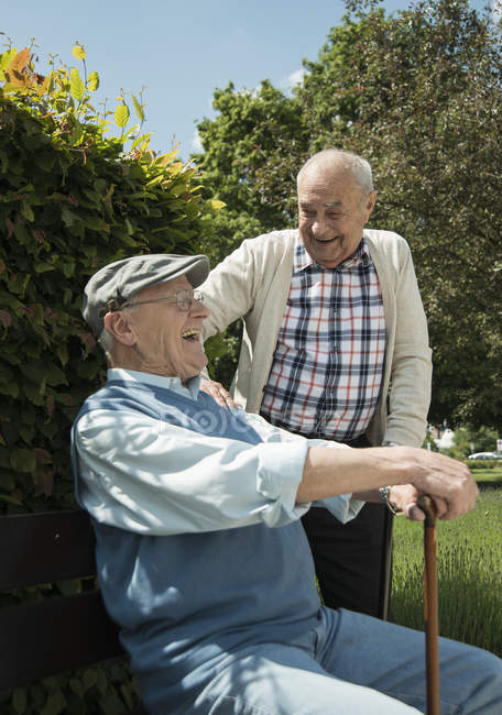 Two old friends communicating in the park — Stock Photo