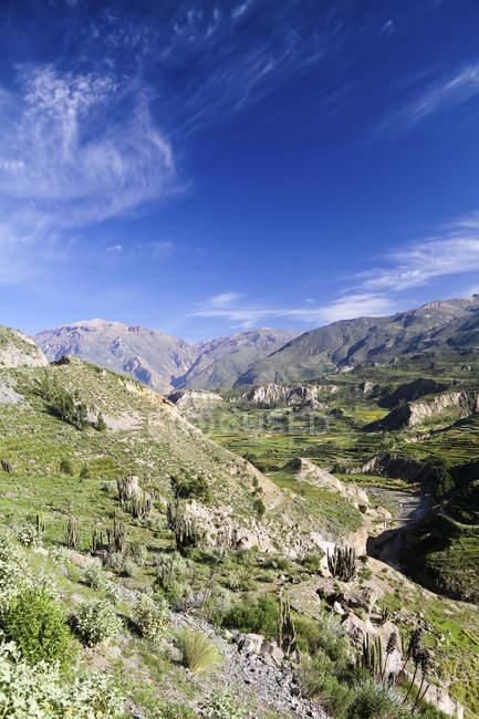 Vue de l'Amérique du Sud, au Pérou, au Canyon de Colca par dessus en temps ensoleillé — Photo de stock