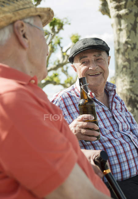 Two old friends toasting with beer bottles in the park — Stock Photo