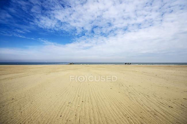 Pays-Bas, Zeeland, Domburg, plage et coureurs pendant la journée — Photo de stock