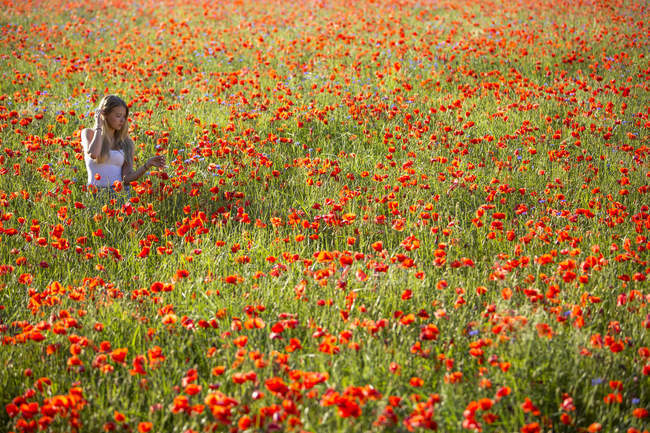 Teenage girl in a poppy field — Stock Photo