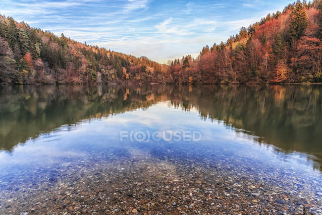 Austria, Carinthia, river Drau with reflection of woods in autumn — Stock Photo