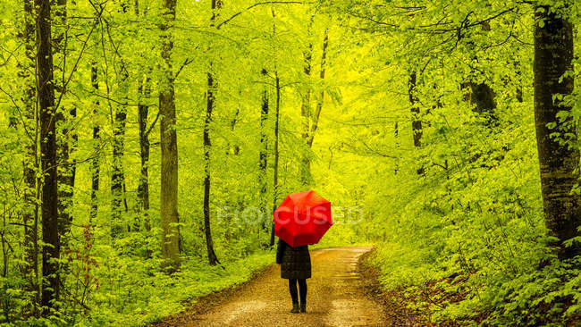 Donna con l'ombrello rosso che cammina sulla pista forestale — Foto stock