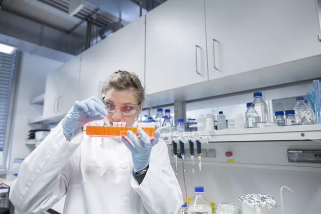 Молодая женщина-ученый, работающая в биологической лаборатории, проверяет образцы — стоковое фото