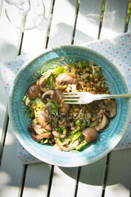 Trigo e salada de cogumelos com aipo e cebola na tigela azul — Fotografia de Stock