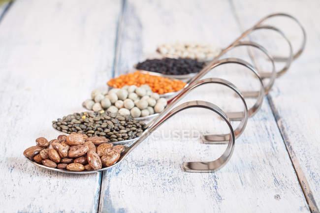 Fila di cucchiai con diversi legumi secchi — Foto stock