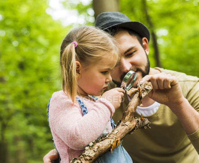 Girl with father examining branch with magnifier in forest — Stock Photo