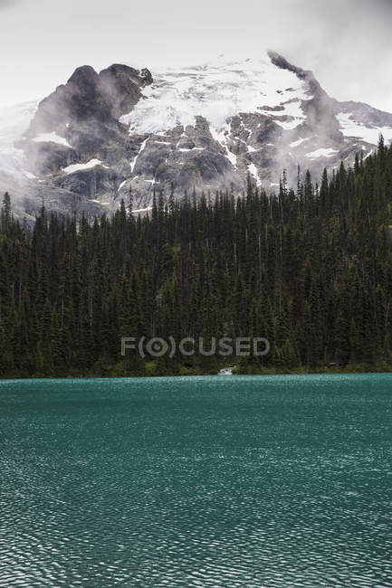 Canada, British Columbia, Joffre Lakes Provincial Park during daytime — Stock Photo