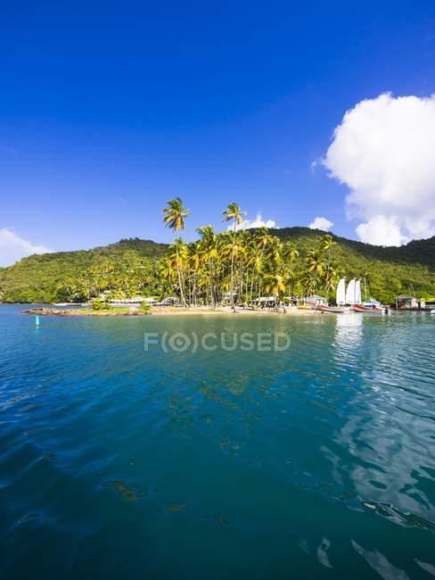 Yachts à voile Caraïbes, Sainte-Lucie, dans la baie de Marigot — Photo de stock