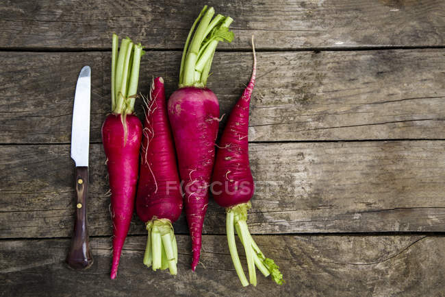 Row of knife and four red radishes — Stock Photo