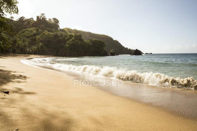 Карибского бассейна, Тринидад и Тобаго, Тобаго, англичанина Бей Бич — стоковое фото
