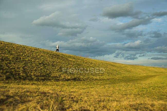 Молодой человек, бегающий по мясу — стоковое фото