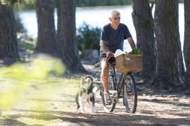 Старший чоловік верхової їзди велосипеді з собакою — стокове фото