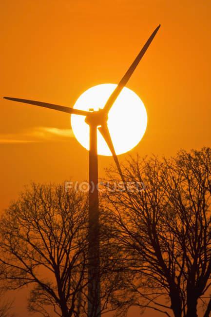 Allemagne, Bavière, soleil du soir et roue à vent — Photo de stock
