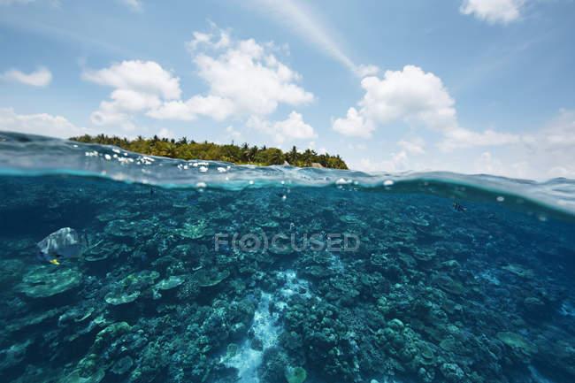 Вид с Индийского океана на остров Мальдив — стоковое фото