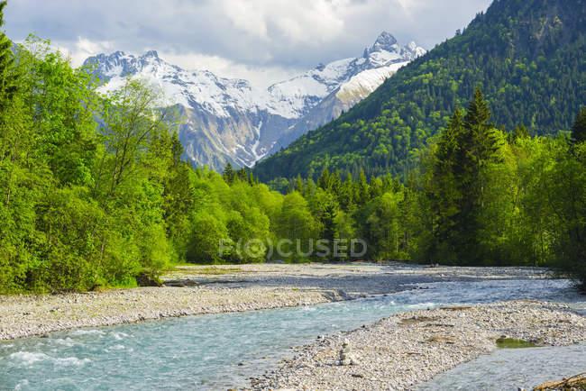 Німеччина, Баварія, Allgaeu, Trettach Долина біля Фюссена, Trettach річки та trees на узбережжі — стокове фото