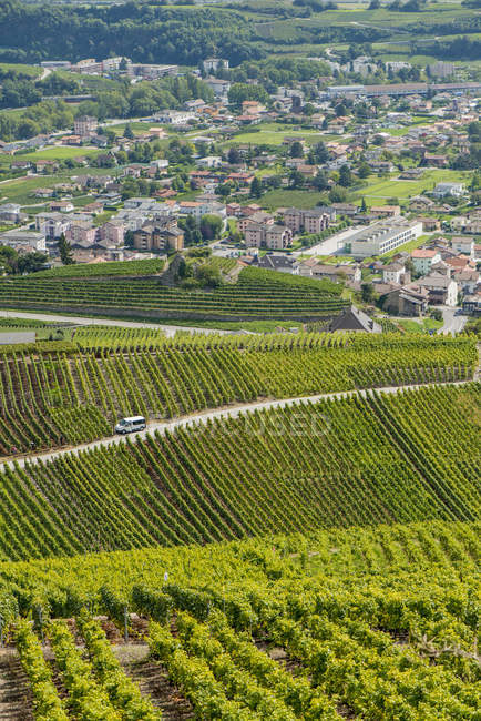 Switzerland, Valais, Rhone Valley, vine growing area of Conthey during daytime — Stock Photo
