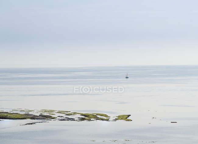 France, Ile de Re, Poitou-Charentes, Atlantic Ocean, Sailing boat over water — Stock Photo