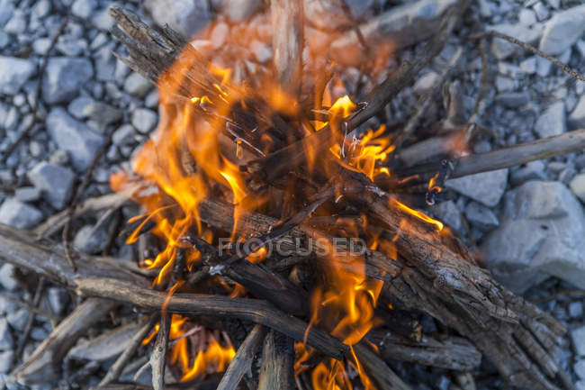 Campfire made from driftwood over stones — Stock Photo