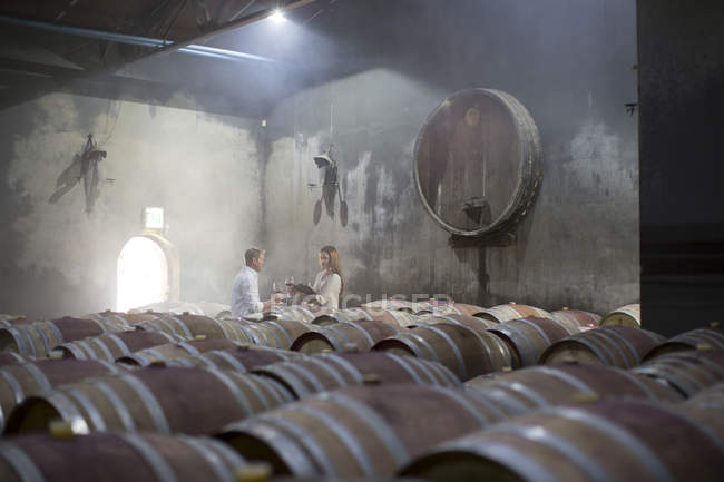 Homem e mulher degustando vinho na adega — Fotografia de Stock